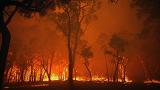 Amazon sets Burning for November