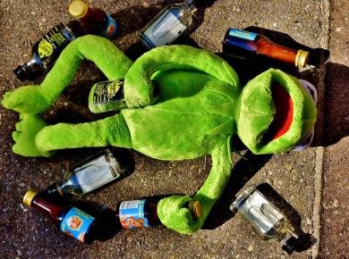 kermit DRUNK sober flying