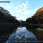 [Photo] 写真散歩 @横浜・四季の森公園