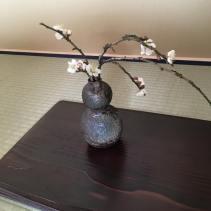 tokonoma-sakura