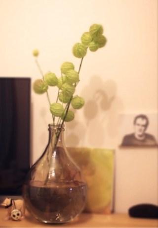 花瓶に花を、頭にバリカンを。