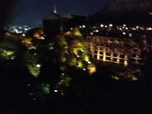 京都 清水寺 ライトアップ 紅葉その2