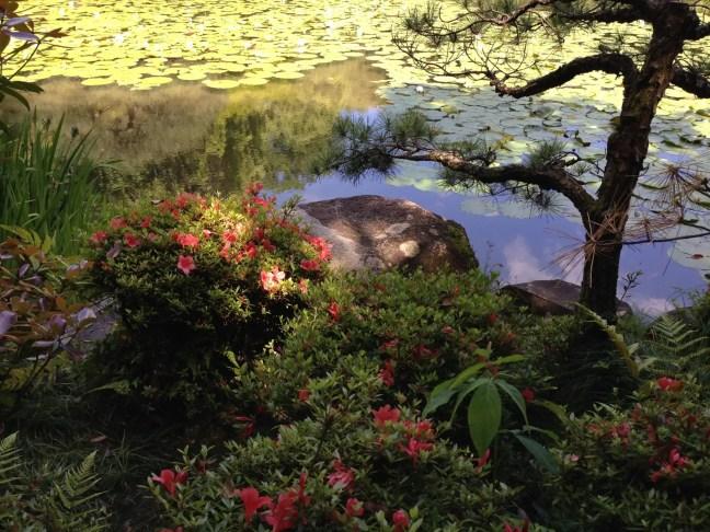 京都 平安神宮 中神苑その2