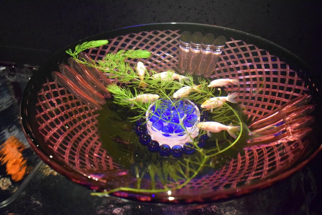 art exhibition in Tokyo, art aquarium 2