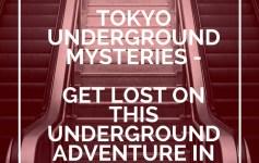 Tokyo Underground Mysteries: Metro Train Games