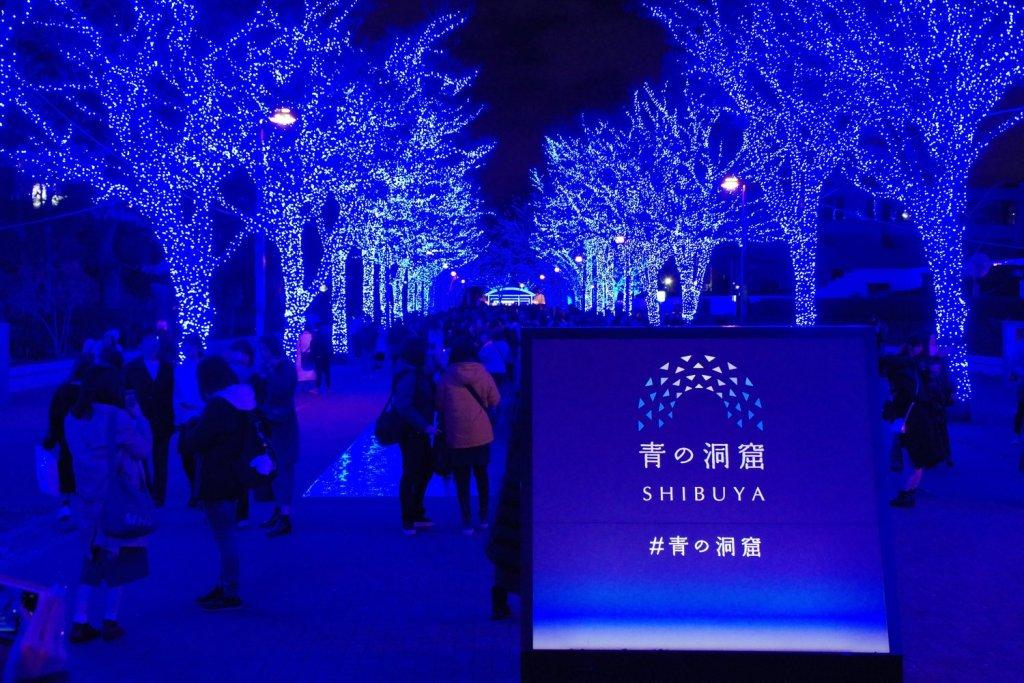 Japan winter activities illuminations