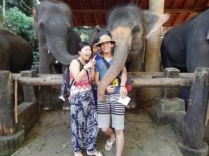 チェンマイで象さんと記念写真