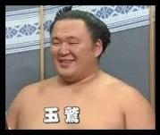 玉鷲,相撲