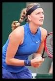ペトラ・クビトバ,女子プロ,テニス