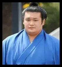 千代の国,相撲,力士
