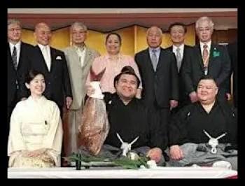 高安,相撲,力士,大関