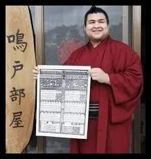 高安,相撲,力士,入幕