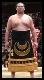 竜電,相撲,力士