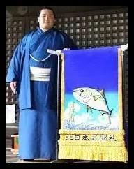 朝乃山,相撲