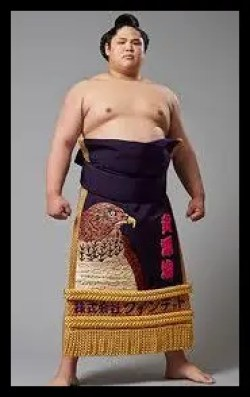 貴源治,相撲