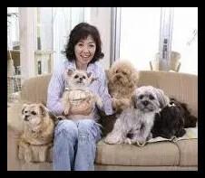 浅田美代子,女優,タレント,歌手,愛犬家