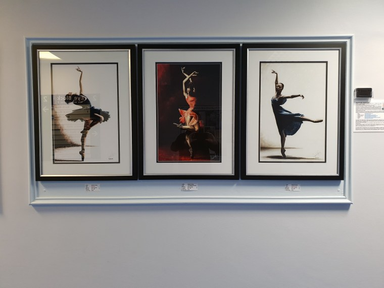 Mystique, The Passion of Dance and Refined Grace prints on A2 size paper in a Berkshire exhibition