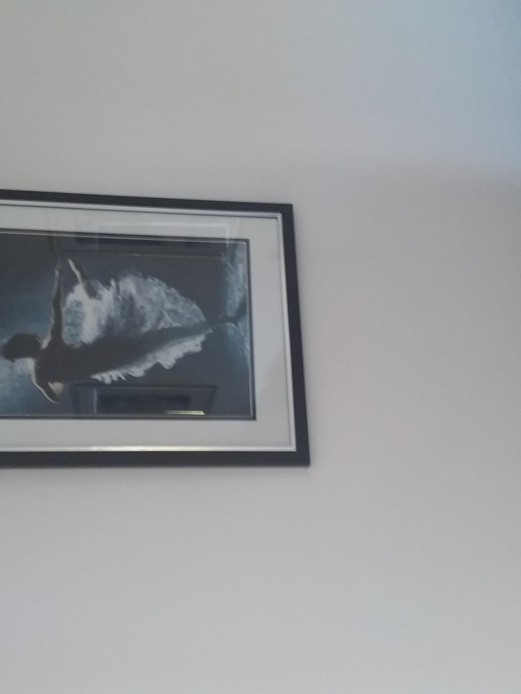 Solitaire print in Steve and Suzi Cowell's home