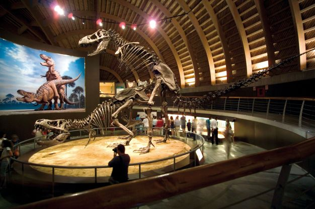 museomuja3