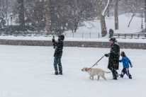 NYC_Snowstorm_Central_Park-20
