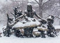 NYC_Snowstorm_Central_Park-21