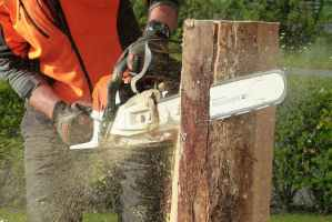 Petrol Chainsaw Hire from RZT Ltd Camborne