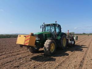 RZT Ltd Contractors Cornwall Planting Veggies (4)