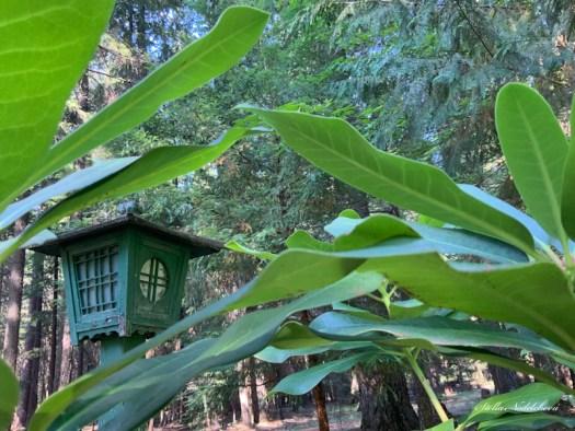Maison de fée dans la forêt