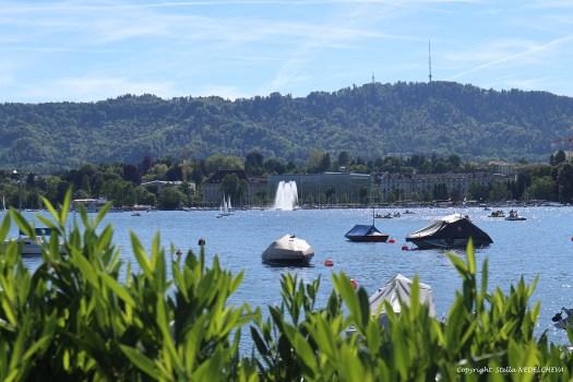 Vue sur le lac de Zurich