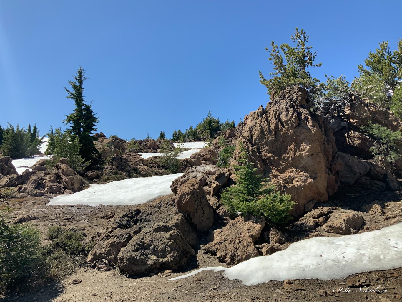 Paysage de haute montagne: roches, conifères, neige, ciel bleu
