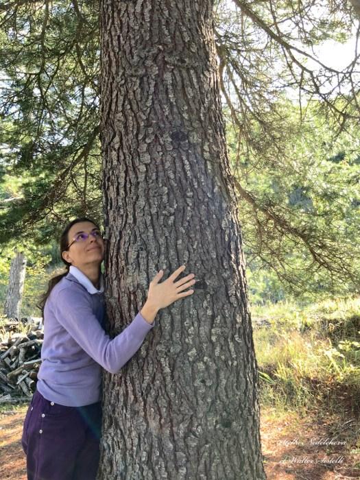 Jeune femme embrassant le tronc d'un arbre centenaire