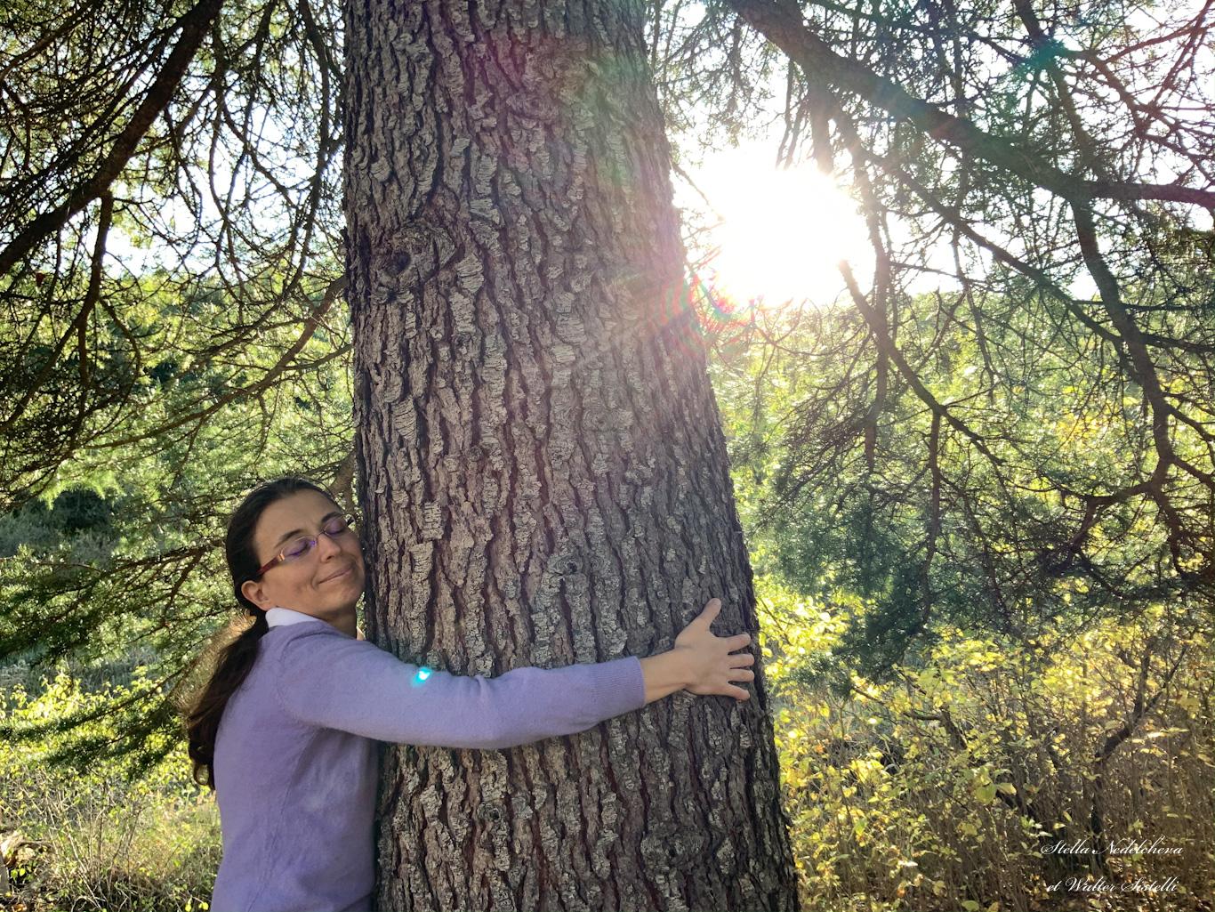 Jeune femme embrassant un arbre centenaire