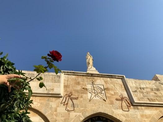 Rose tendue vers la statue de Marie