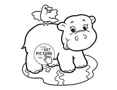 animal coloring pages coloring pages for kids and baby hippo on