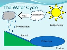 1000 images about Water Cycle on Pinterest | Water cycle