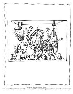 1000 images about 3 animal coloring pages on pinterest teacher
