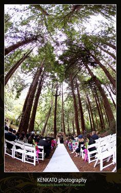 1000+ images about Woodland Wedding Ideas on Pinterest ...