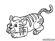 tigers coloring pages and coloring on pinterest