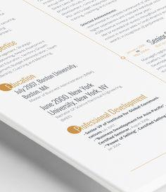 curriculum vitae cv resume template resumes format modern