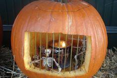 Cool Pumpkins- this