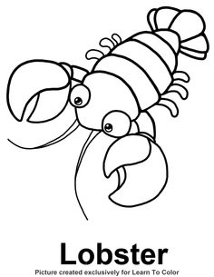 coloring pages coloring and whales on pinterest