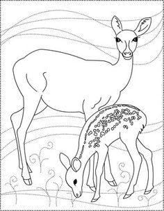 1000 images about appliques on pinterest deer coloring pages