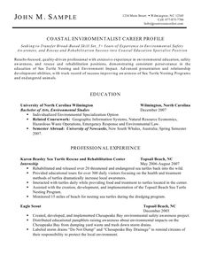 Free Artsy Resume Templates Resumes Samples Template