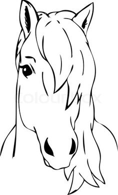 horse head google images and horses on pinterest