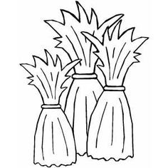 corn stalks coloring pages and coloring on pinterest