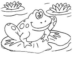 pond life ponds and coloring pages on pinterest