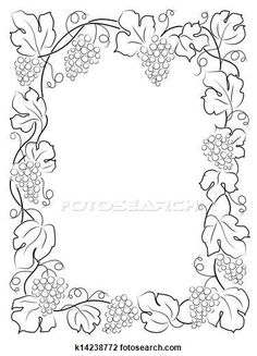 grape vines vines and drawings on pinterest