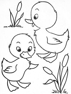 baby ducks ducks and coloring pages on pinterest