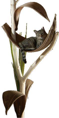 Katzenbaum Bauen Katzen Mietzen Pinterest