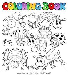 insects coloring pages and coloring on pinterest